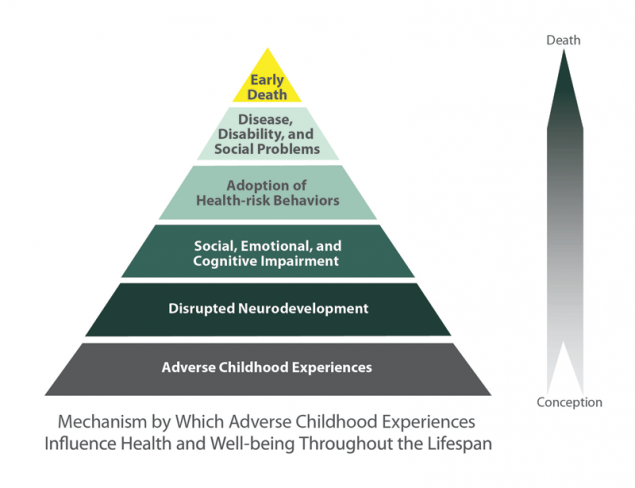 ACE pyramid diagram showing mechanism by which childhood experiences influence health and wellbeing across the lifespan. From bottom to top: adverse childhood experience, disrupted neurodevelopment, social emotional and cognitive impairment, adoption of health risk behaviours, disease disability and social problems, early death.