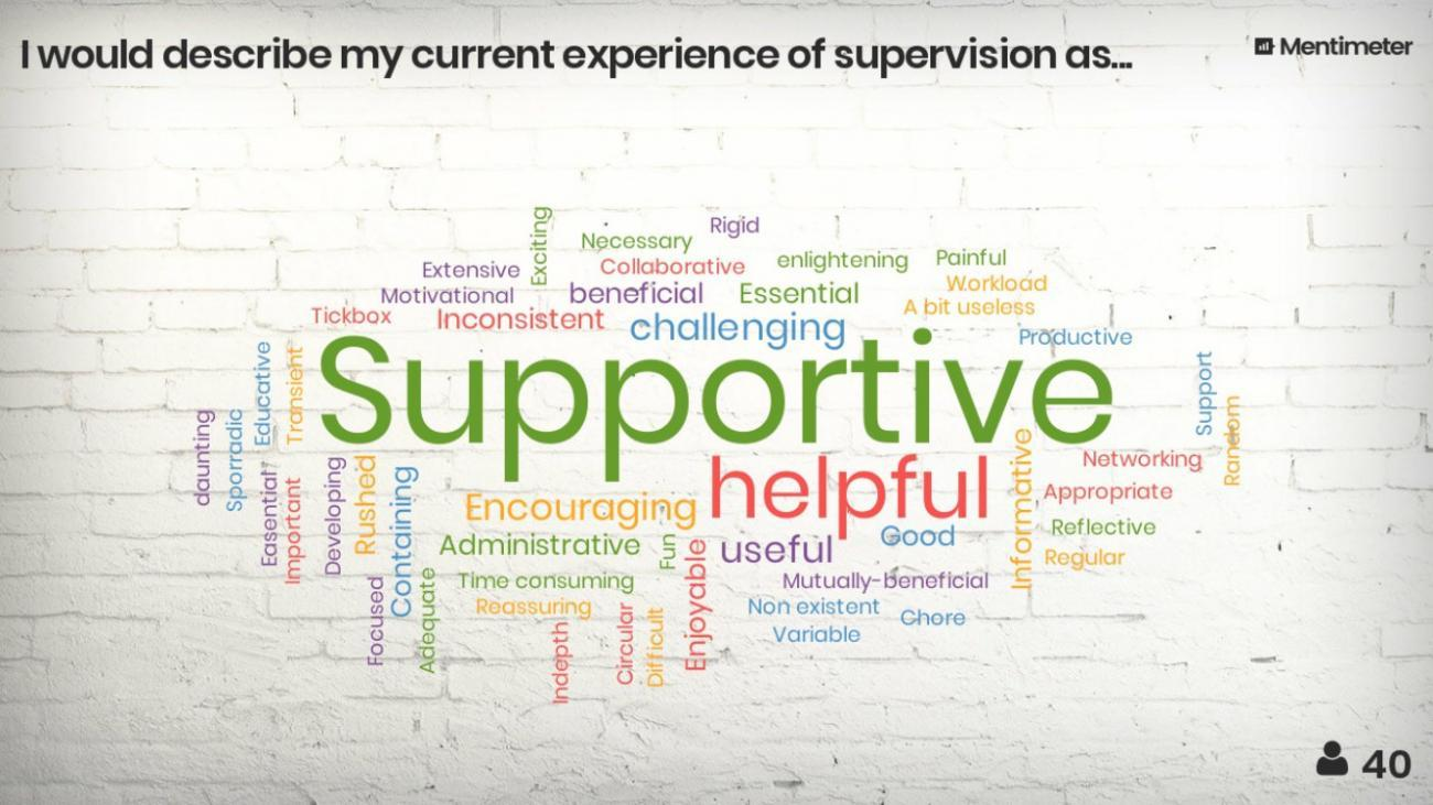 wordcloud of experience